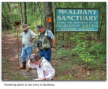 Botany fieldtrip at entry to McAlhany | photo